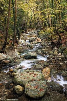 Kissos stream in Mount Pelion (photo by Christos Andronis)