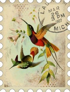 "Bountiful Heirlooms: Free Printables: ""Postage Stamp"" Journaling Cards hummingbird design vintage stamps for cardmaking or as journal stickers"