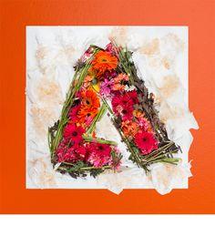 Sagmeister x Walsh | Adobe Remix - Dan Hennessy Design