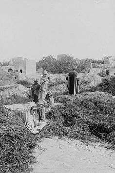 Ramallah - رام الله : RAMALLAH - Palestinians whiling away a Summer's afternoon at the threshing floors (Al-Biader) of Beitin, early 20th. c...