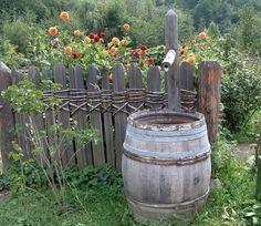 Bauerngarten von Barbara H. E.