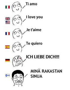 """""""german is the language of romance I was going to correct Ti Amo.lol Spanish is also Te Amo. Finnish is rakastan sinua Learn Finnish, Learn German, Funny Images, Funny Pictures, Finnish Words, Finnish Language, L Love You, History Memes, Funny Comics"""