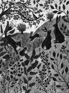 Sussex Downs at Dusk - Catherine Rowe  #nature #animals #illustration
