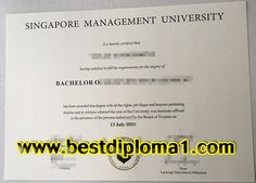 singapore management university fake diploma