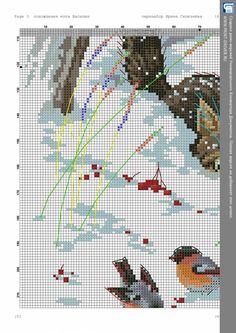 1264e122.jpg 1131×1600 пикс
