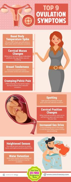 Cervical Mucus Changes to Track Ovulation Infographic ...