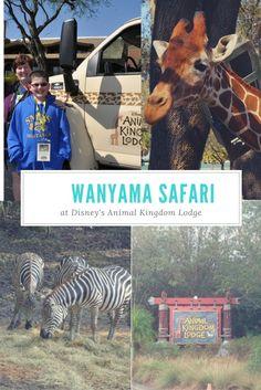 Wanyama Safari at Disney's Animal Kingdom Lodge