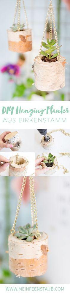 Kreative DIY Idee aus einem Birkenstamm: Hängende Pflanzöpfe und Blumenampeln für Sukkulenten aus einem Birkenstamm einfach selbermachen   Pflanzen DIY mit Step by Step DIY Tutorial zum Nachbasteln