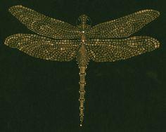 Resultado de imagen de dragonfly mosaics