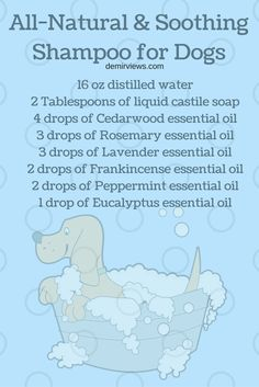Essential Oils for Dogs: How to use them! · DemirViews
