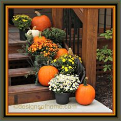 How to decorate your front steps for fall, and spend less than $45? You can do it! We even tell you how to decorate front steps for fall with $20 or less. (Step Mum Fall Decorating)