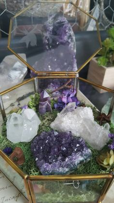 This listing is for the unbelievably charming Crystal Garden pictured above. I adore gemstones and crystals and am fascinated by their beauty and metaphysical healing powers. So, I decided to create a terrarium that they could live in and be displayed beautifully while not in use. This means that the crystals can be removed and placed back in whenever (and however) you like!  *Terrarium Dimensions* 5 inches across the top x 2.25 inches tall Top of the glass box has a lovely bird and flower…