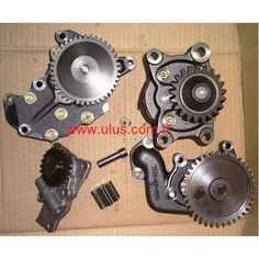 4983588 Oil pump, Motor Yağ Pompası Cummins Engine Parts