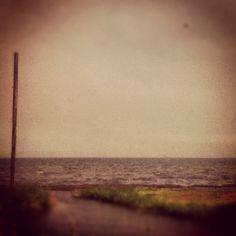 Susurrous of the Sea