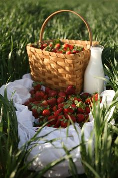 berry picking and fresh milk