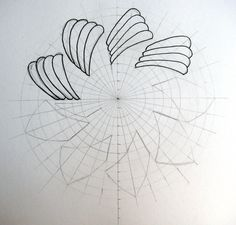 """zendala steps 
