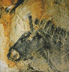 27,000 year old Cosquer Cave Paintings, engravings, and hand stencils.The entrance is 37 meters underwater, due to the rise of the Mediterranean Sea in Paleolithic times. Made  by a small group near what is now Marseille France. It has been sealed off to protect the art.