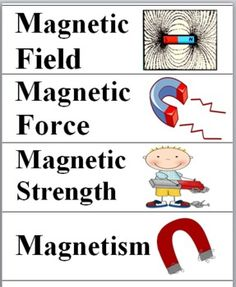 Magnetism Science Word Wall Cards