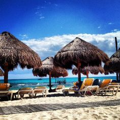 1209 Best Mexican Caribbean Images In 2019 Riviera Maya