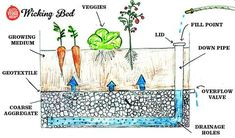All life, whether in plant form or otherwise, is made up almost entirely of water and relies on it more than anything for survival. We ourselves begin life at our most water condensed version - app. Raised Garden Beds Irrigation, Wicking Garden Bed, Wicking Beds, Veg Garden, Garden Planters, Water Garden, Greenhouse Gardening, Hydroponic Gardening, Container Gardening
