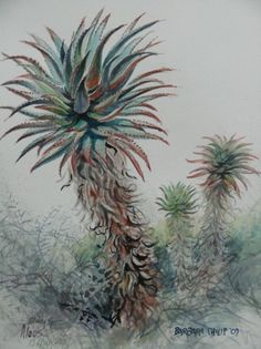 Aloes Fruit Trees, Watercolor Art, Clarity, Art Ideas, Illustration Art, Plants, Painting, Inspiration, Paintings Of Birds
