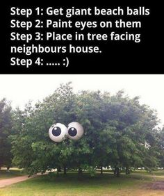 Paint eyes on two 2 beach balls and play in tree facing neighbors neighbors house, prank pranks tree looking at them starting This would be a funny prank. clean fun no one gets hurt nothing damaged pranks A Funny, Funny Shit, Crazy Funny, Funny Stuff, 2016 Funny, Funny Food, Funny Things, Funny Pranks, Funny Jokes
