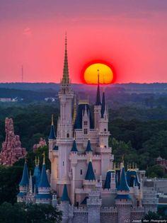 Oh, Disney my heart! My heart needs Disney! World Disney, Disney World Magic Kingdom, Disney Parks, Disney Pixar, Parc A Theme, Disney Background, Disney Fanatic, Man Photography, Cinderella Castle