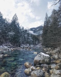 Gold Creek in Golden Ears Provincial Park - Canada