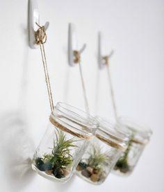 Идеи для необычных флорариумов