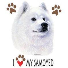 Love My Samoyed Dog HEAT PRESS TRANSFER for T Shirt Sweatshirt Fabric Tote #904b #AB