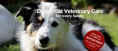 Tsolum Mobile Veterinary Clinic | GOOD FRIENDS • GOOD VALUE • ALL ANIMALS!