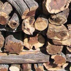 Kameeldoring - Order bulk per @ Buy Firewood, Diy Fire Pit, Fire Starters, Cape Town