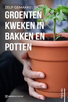 Als je niet over een ruime tuin beschikt maar toch graag wilt tuinieren, is groenten kweken in bakken en potten dé perfecte oplossing. Ook leuk voor kinderen!