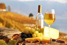 Weinseminar Berlin - orange Wine und Käse