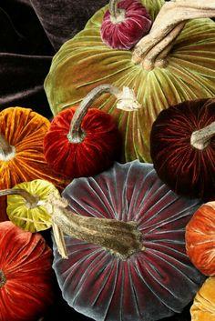 Autumn richness.