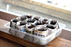 starting plants from seed - newspaper pots can be planted directly in the ground; tips for getting seedlings to sprout early