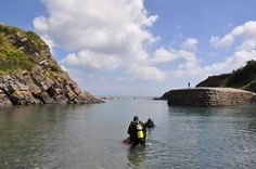 Have you tried coasteering in Stackpole? Lily Pond, National Trust, Have You Tried, Sandy Beaches, Wales, Outdoor, Beautiful, Outdoors, Welsh Country