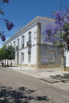Câmara Municipal de São Brás de Alportel com as Jacarandás em flor