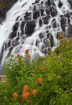 Twin Falls at Yankee Boy Basin - San Juan Mountains, Colorado Stock id #966