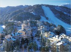 LeX Paradise: 5 places must-go for ski and winter sports in South Korea!