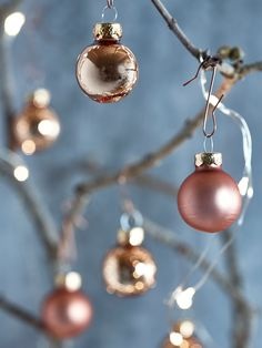 Add a touch of opulence to your festive tree with our set of twenty four miniature copper baubles. Made from quality glass with twelve high shine and twelve satin copper finish, each bauble includes a matching copper loop top for adding string or raffia. Team with our 100 Bauble Hooks Copper and hang from our Indoor Outdoor Light Up Birch Trees or use as the finishing touch to your festive wrap.