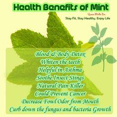Health Benefits of Mint....