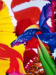marc quinn flower photography - Google Search