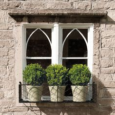 Lattice window boxes from Garden Requisites - perfect for herbs, small shrubs and flowers