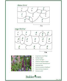 Landscaping Ideas Around Patio Landscape Borders, Garden Landscape Design, Garden Borders, Alchemilla Mollis, Style Cottage, Cottage Garden Plants, Planting Plan, Buy Plants, Plant Design