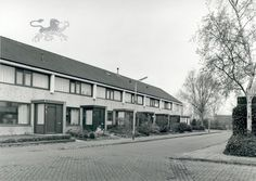 trui jentinkwei  2000 Historisch Centrum Leeuwarden - Beeldbank Leeuwarden