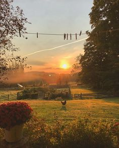 The view of farm is pretty well obscured from the countryside Farm Nature Aesthetic, Aesthetic Grunge, Plantation, Farm Life, Country Life, Country Roads, Landscape Photography, Photography Tips, Photography Flowers