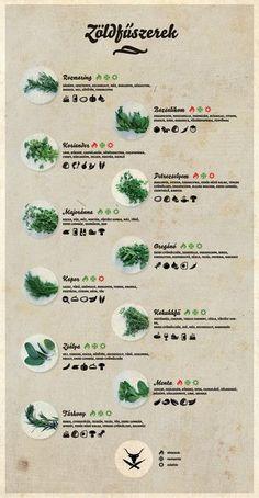 Ismeri a zöldfűszereket? Biztos? Smoothie Fruit, Good Food, Yummy Food, Home Vegetable Garden, Diy Food, Food Hacks, Food Inspiration, Healthy Lifestyle, Food Porn