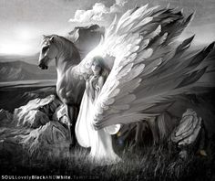 Pegasus is the horse who carries the angels who never learned how to fly...in my opinion