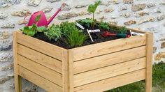 Style Deco, Herb Garden, Horticulture, Outdoor Gardens, Backyard, Gardening, Sweet, Diy, Design